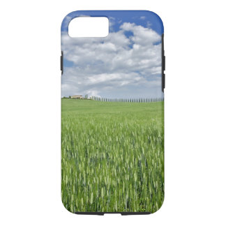 Wheat field and drive lined by stately cypress iPhone 7 case