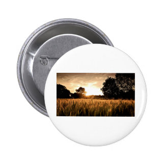WHEAT FIELD BUTTONS