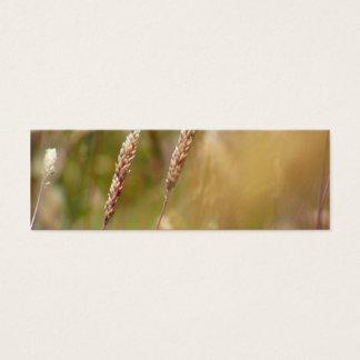 Wheat Field Blur Mini Business Card