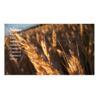 Wheat Field - Business Cards