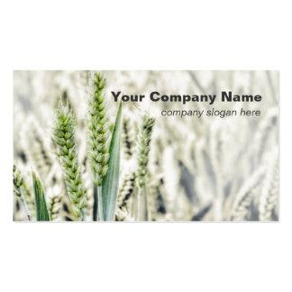 Wheat Field Custom Business Cards