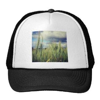 Wheat Field Hat