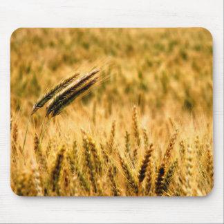 Wheat field mousepads