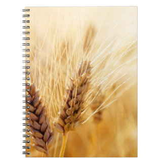 Wheat field notebook