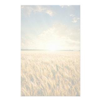 Wheat field on sunset stationery
