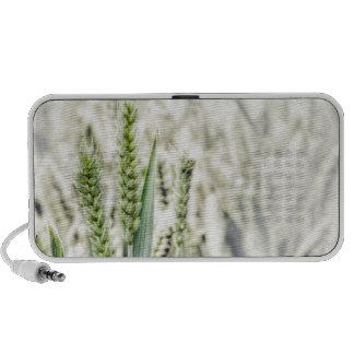 Wheat Field portable Doodle speaker