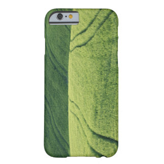 Wheat Field with Tire Tracks, Pienza, Val Barely There iPhone 6 Case
