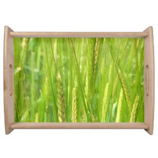 Wheat Fields Serving Tray