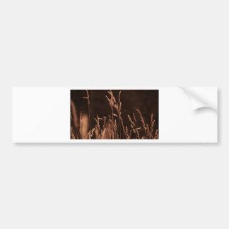 wheat grass bumper sticker