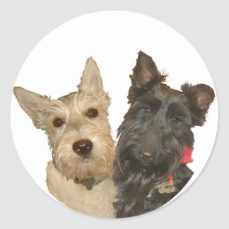 Wheaten & Black Scottish Terriers Classic Round Sticker