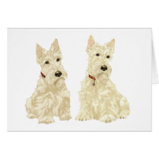 Wheaten Scottish Terriers Card