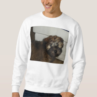 Wheaten_terrier puppy sweatshirt