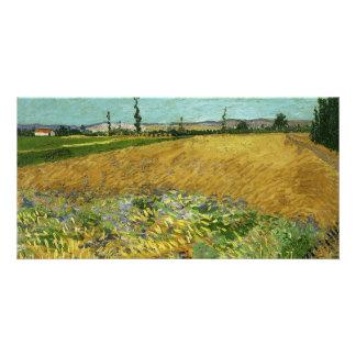 Wheatfield by Vincent Van Gogh Custom Photo Card