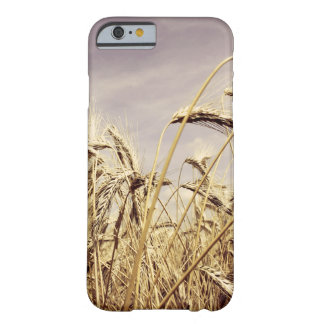 Wheats In The Wind iPhone 6 Case