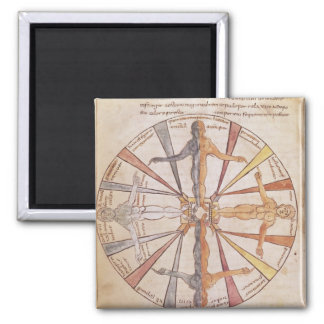 Wheel of the seasons and months square magnet