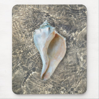Whelk Shell Mouse Pad
