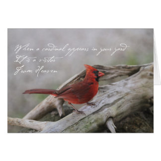 When a Cardinal appears in your yard… Card