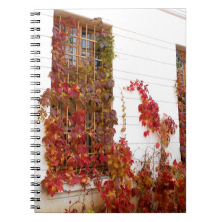 When Nature Takes Over Notebooks
