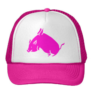 When pigs fly hats