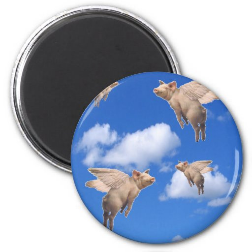 When Pigs Fly Refrigerator Magnet