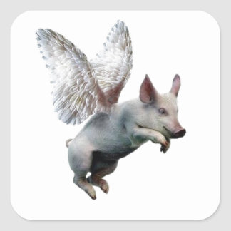 When Pigs Fly Square Sticker