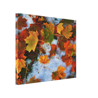 When Seasons Collide Gallery Wrapped Canvas