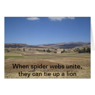 When spider webs unite, they can tie up a lion card