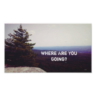 Where Are You Going Landscape Photo Poster