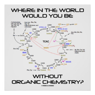 Where In The World You Without Organic Chemistry? Poster
