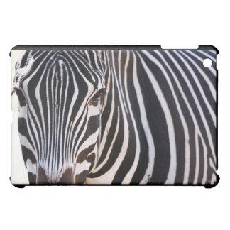 Where Is The Zebra ? iPad Mini Covers