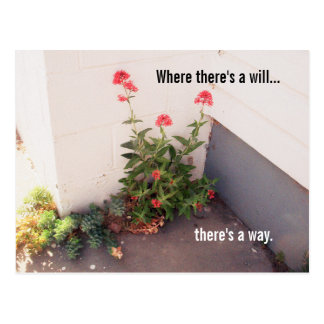 Where There's a Will Flower Postcard | Inspire