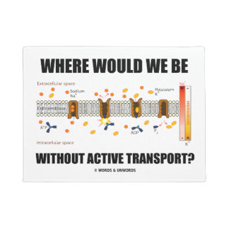 Where Would We Be Without Active Transport? Doormat