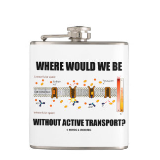 Where Would We Be Without Active Transport? Hip Flask