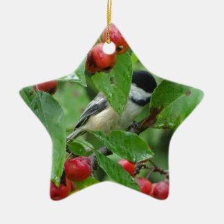 Where's Chickadee? Ceramic Ornament