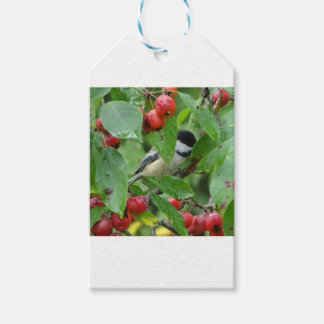 Where's Chickadee? Gift Tags