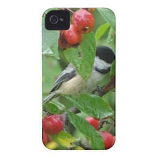 Where's Chickadee? iPhone 4 Case