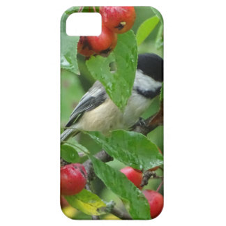 Where's Chickadee? iPhone 5 Covers