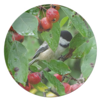Where's Chickadee? Plate