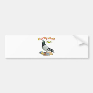 Which Way is Home Pigeon Art Bumper Stickers