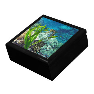 Whimsical Seahorse Gift Box