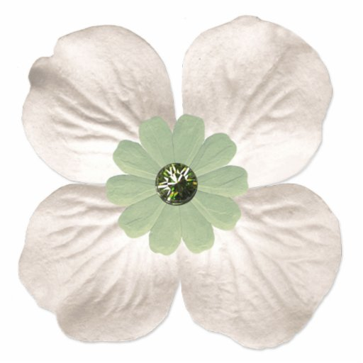 Whimsical White Dogwood Flower Photo Cutout