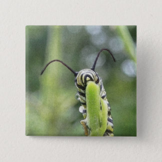 Whimsical Young Monarch Butterfly Caterpillar 15 Cm Square Badge