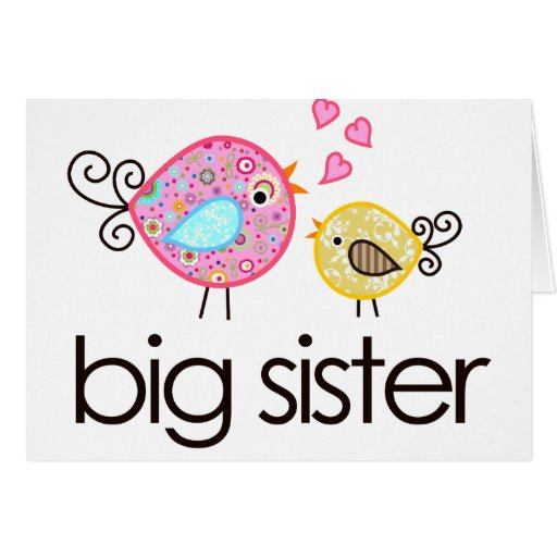 Whimsy Birds Big Sister T-shirt Announcement Card