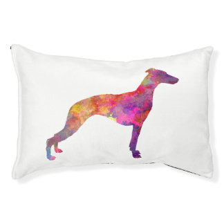 Whippet in watercolor pet bed