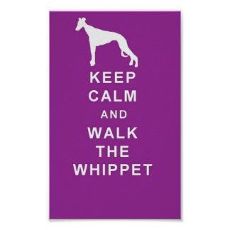 WHIPPET Keep Calm Walk the Whippet great poster! Poster