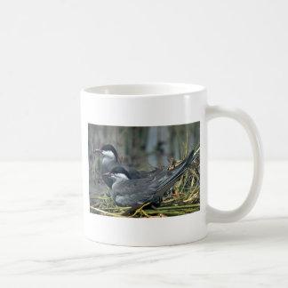 Whiskered Tern Mugs