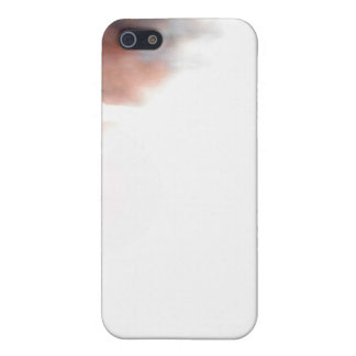 Whiskers Cases For iPhone 5