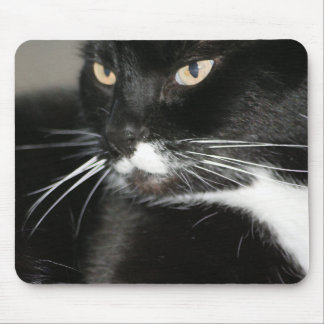 Whiskers Mousepad