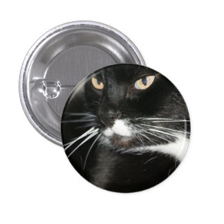Whiskers Pin