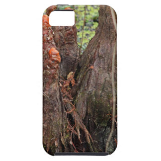 Whiskey Smile iPhone 5 Covers